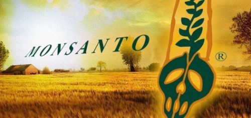 original_monsanto_test-526x250.jpg