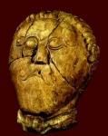 cécile guignard-vanuxem,vercingétorix,druides,citoyens,celtes,kelts,histoire,poilitique